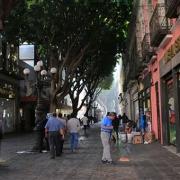 nuevos negocios en Puebla